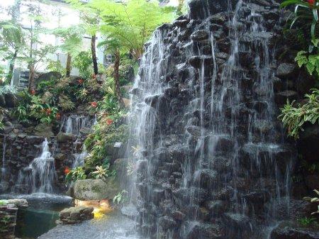 makino botanical garden green house kochi