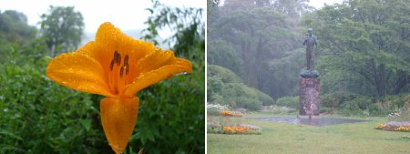 makino botanical garden kochi