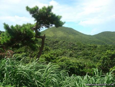 tokashiki island okinawa 4